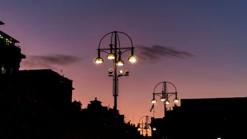 Foto profissional grátis de cair da noite, iluminação pública, rua, silhueta