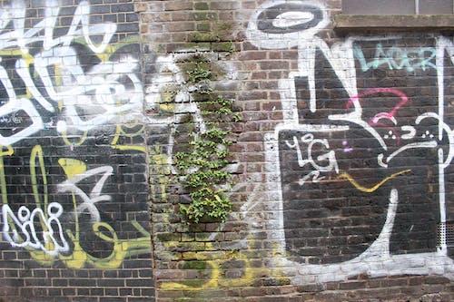 Free stock photo of art, brick wall, graffiti street art, london