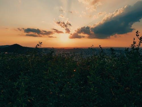 Gratis lagerfoto af belo horizonte, himmel, mobilfotografering, natur