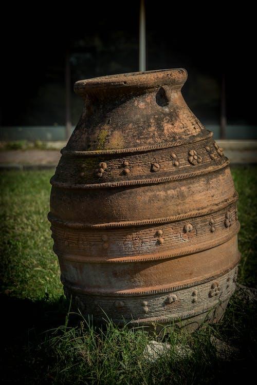 Free stock photo of bowl, ceramic, grass, park