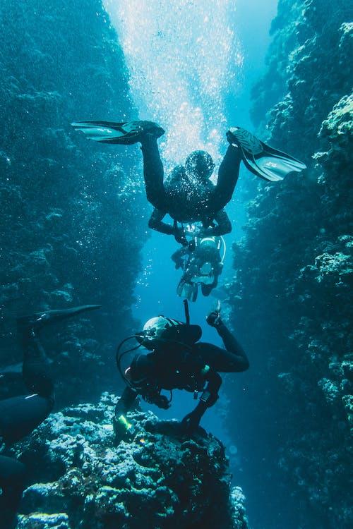 Foto Von Menschen, Die Unter Wasser Schwimmen