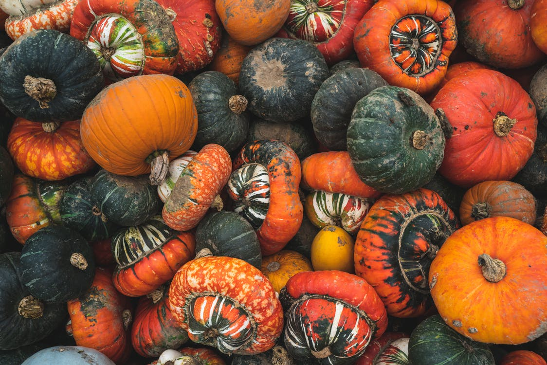 Close-Up Photo Of Pumpkins