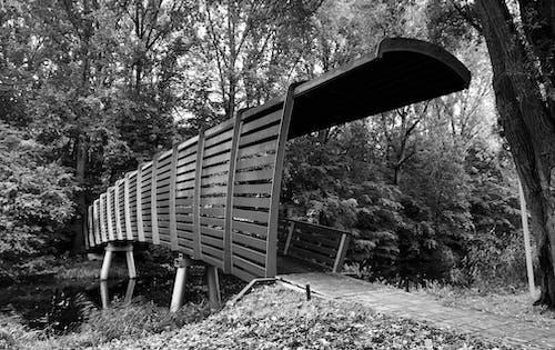 Foto d'estoc gratuïta de brug, pont, pont d'arc
