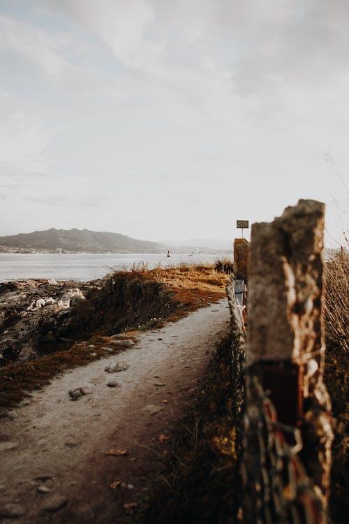 Foto d'estoc gratuïta de a l'aire lliure, aigua, alba, camí