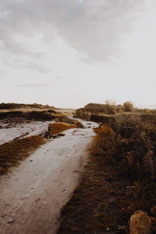 泥路, 砂, 路