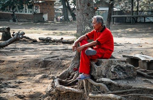 Ingyenes stockfotó ázsiai férfi, ázsiai személy, egy, felnőtt témában