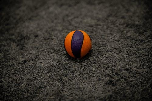Free stock photo of ball, basketball, basketball basket