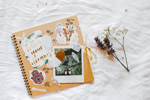 Gratis lagerfoto af blad, blomster, dekoration, design