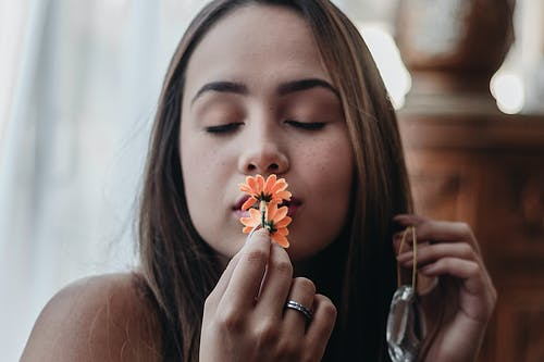 Fotos de stock gratuitas de actitud, adentro, belleza, bonita