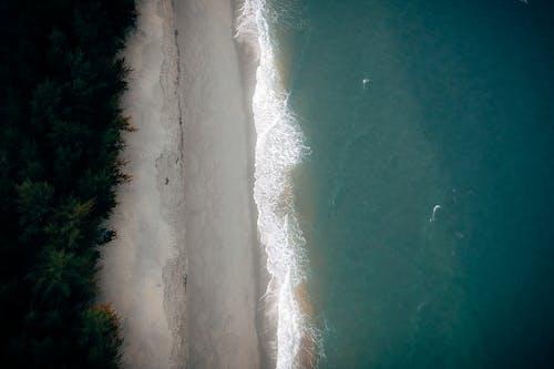 岸邊, 從上面, 水, 海 的 免费素材照片