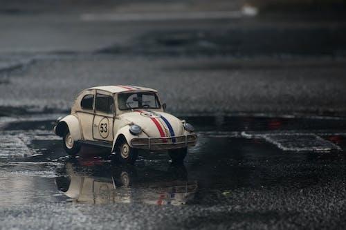 Gratis stockfoto met kever, Volkswagen Kever