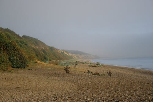 Free stock photo of beach, misty, nature, water