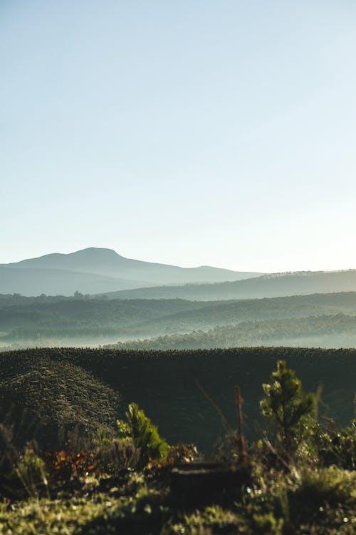 天性, 天空, 山, 戶外 的 免費圖庫相片