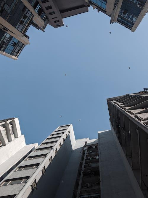Δωρεάν στοκ φωτογραφιών με #mobilechallenge, shotonpixel, αρχιτεκτονική, αρχιτεκτονικό σχέδιο