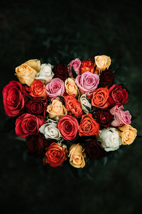 Assorted Color Of Bouquet Of Flowers