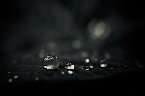 Free stock photo of after the rain, black and white, light reflections