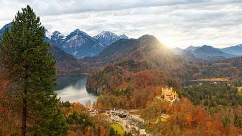Photos gratuites de arbres, aube, automne, château de hohenschwangau