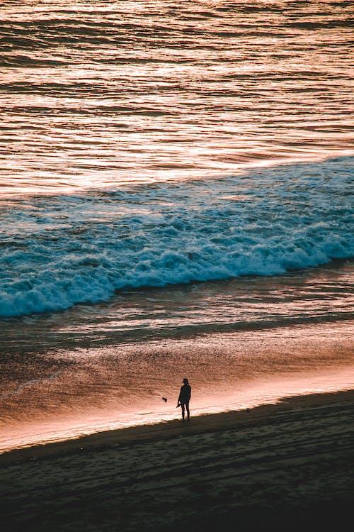 Ingyenes stockfotó hajnal, hullámok, óceán, part témában