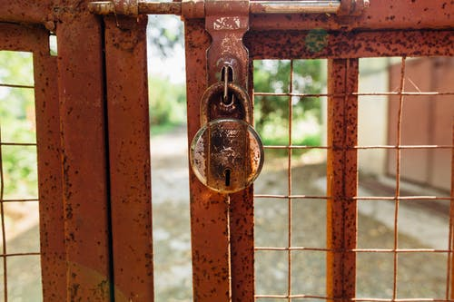Rusty Padlock on Metal Gate