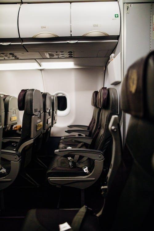 aeronave, assento de avião, assentos