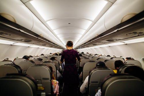 交通系統, 內部, 坐, 客機 的 免費圖庫相片