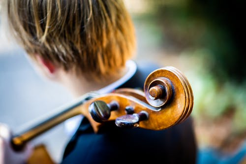 Photo Of Person Holding String Instrument