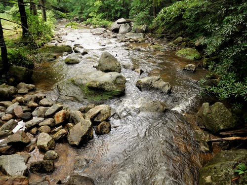 Free stock photo of mountain stream, nature, stream