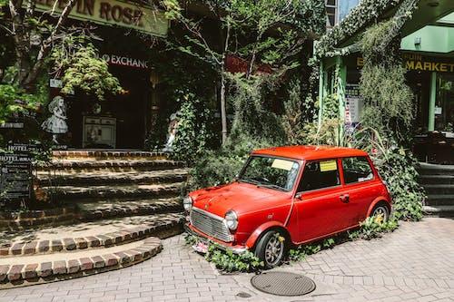 Mini Cooper, 交通系統, 停, 商店 的 免費圖庫相片