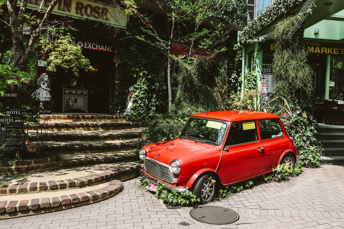 Photo of Red Mini Cooper Parked Near Plants