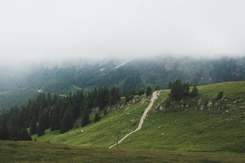 Ingyenes stockfotó hegy, köd témában