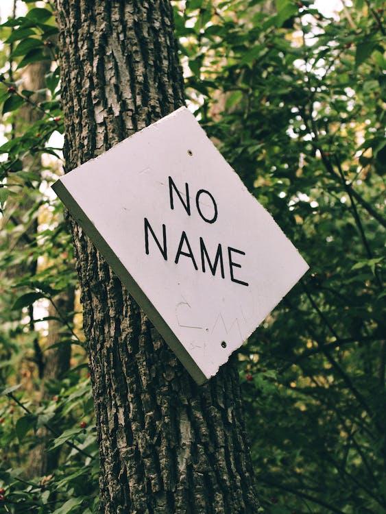 No Name Signage