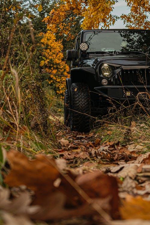 Low Angle Photo of Jeep Wrangler