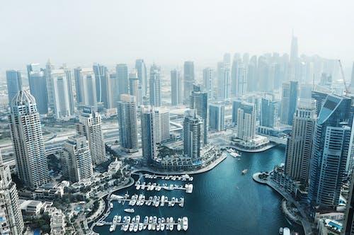 Free stock photo of dubai marina