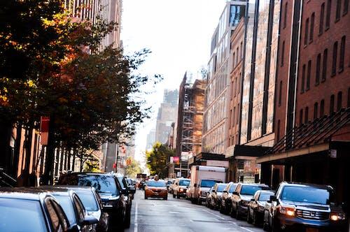 Ingyenes stockfotó autólámpák, forgalmas utca, Manhattan, new york city témában