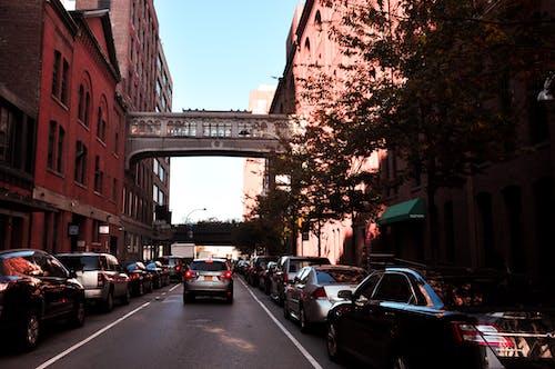 Ingyenes stockfotó autók, falusias, forgalmas utca, New York témában