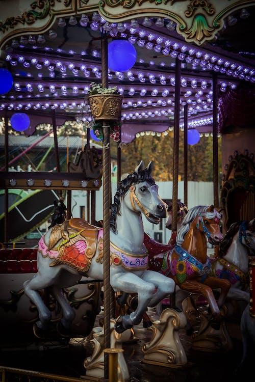 Free stock photo of children, fair, horse, lights