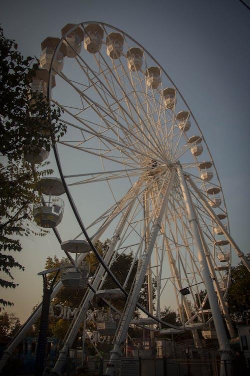 Free stock photo of children, fair, wheel