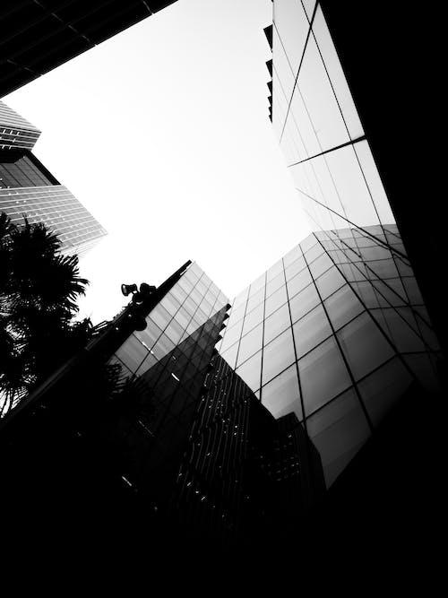 Fotos de stock gratuitas de edificio, edificios de vidrio, minimalismo, monocromático