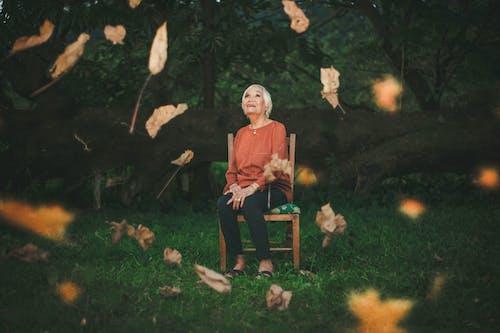 Foto d'estoc gratuïta de a l'aire lliure, adult, ancians, assegut