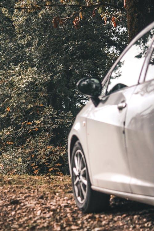 คลังภาพถ่ายฟรี ของ รถ, รถสีขาว, อิบิซา