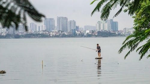 ハノイ西湖, ベトナム, 釣り, 魚を捕るの無料の写真素材