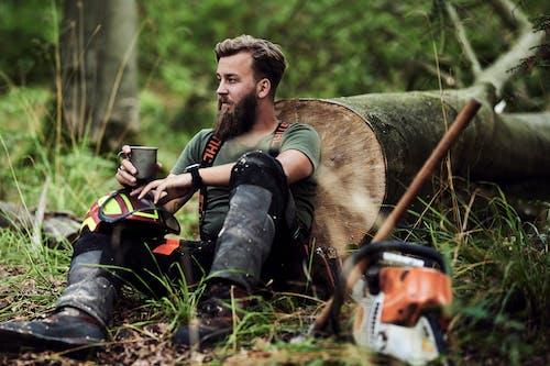 Immagine gratuita di a riposo, albero, barba folta, ceppo