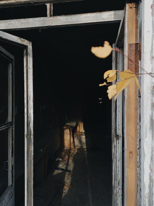 インドア, さびた, さびれた, ドアの無料の写真素材