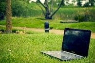 laptop, notebook, grass