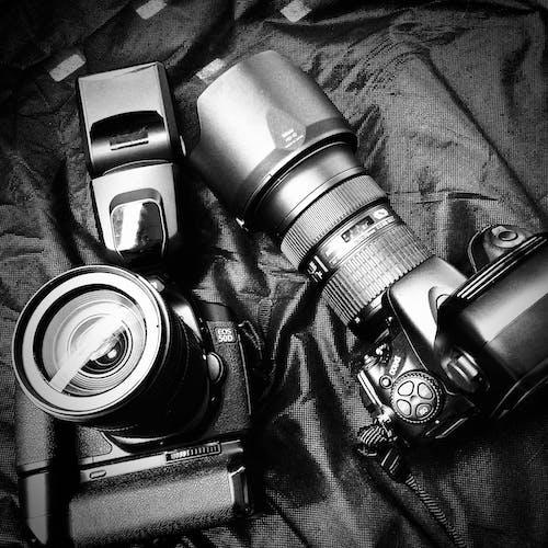 Gratis arkivbilde med canon, digitalt kamera, fotografi, nikon