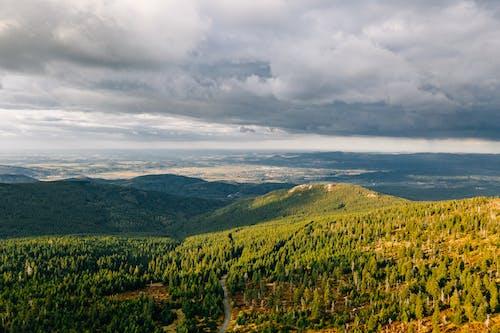 Foto stok gratis awan, berawan, bidang, di luar rumah