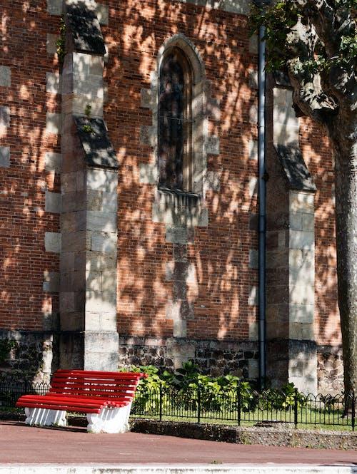 Free stock photo of bench, shadow, tree