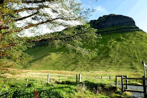 Kostenloses Stock Foto zu bäume, berg, berg mit flachem gipfel, blauer himmel