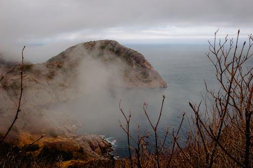 分支機構, 多雲的, 天空, 山 的 免費圖庫相片