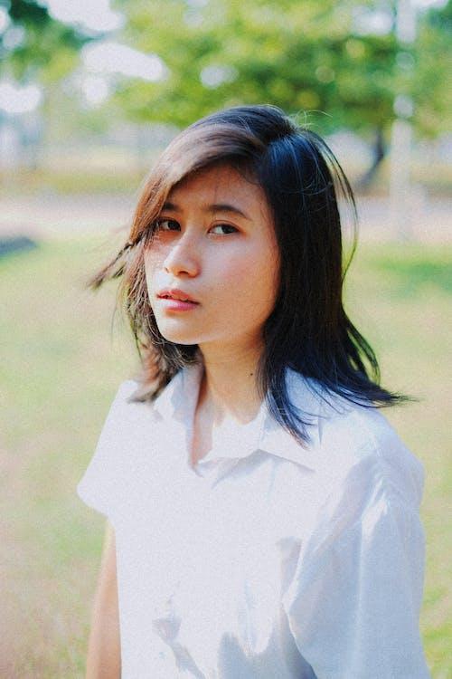 Fotobanka sbezplatnými fotkami na tému biela blúzka, biela košeľa, bruneta, hnedovláska
